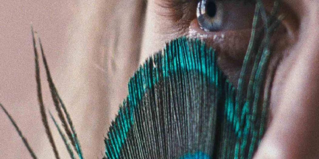 A Metamorfose dos Pássaros - 9º Olhar de Cinema